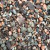 Soil (1lr Scoop) 1 20180127 160317