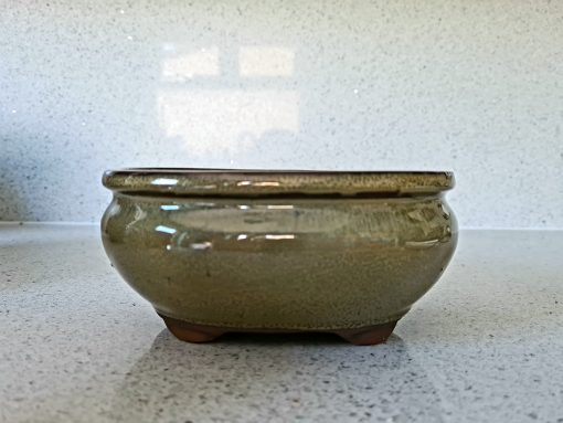 Olive Green Oval Pot 2 20200719 125434 scaled